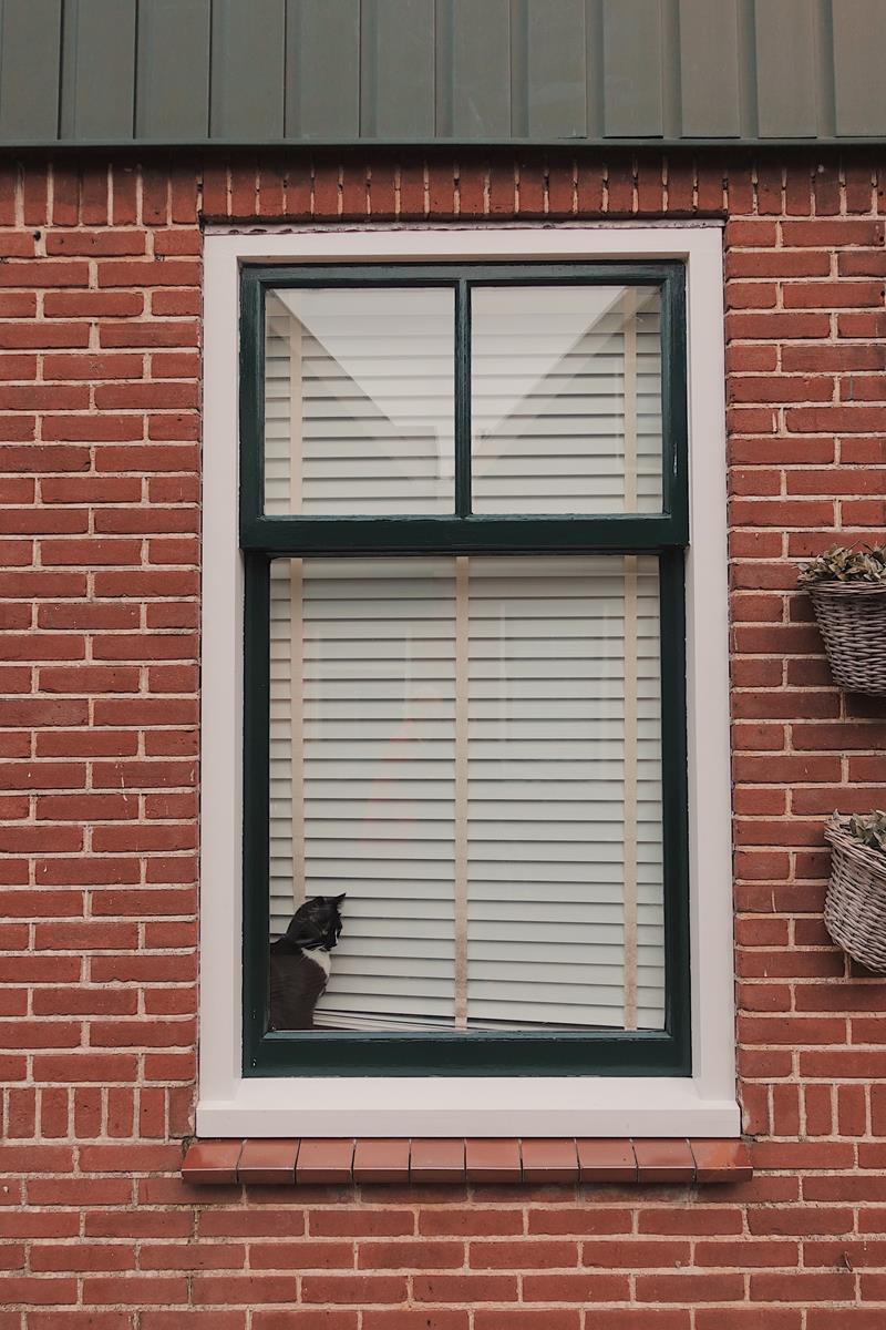 Nowoczesne okna i drzwi do domu