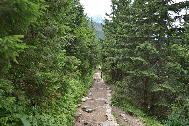 Co można powiedzieć o bazie turystycznej w polskich górach?